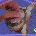 Como Inocular seu bolo PF TEK para cultivo de cogumelos mágicos?